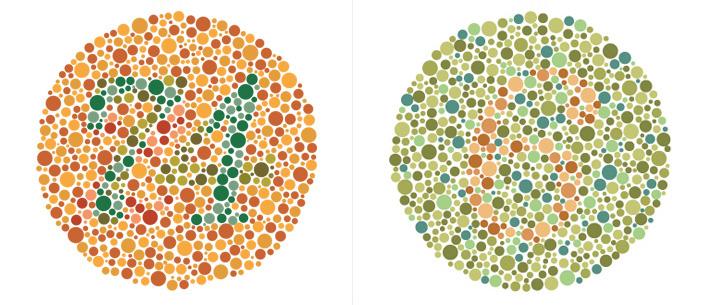 göz renk testi 2